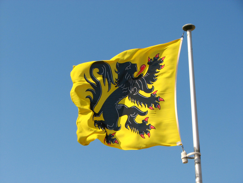 Saluting the flag - Page 5 Flemish_Flag_%288611811632%29