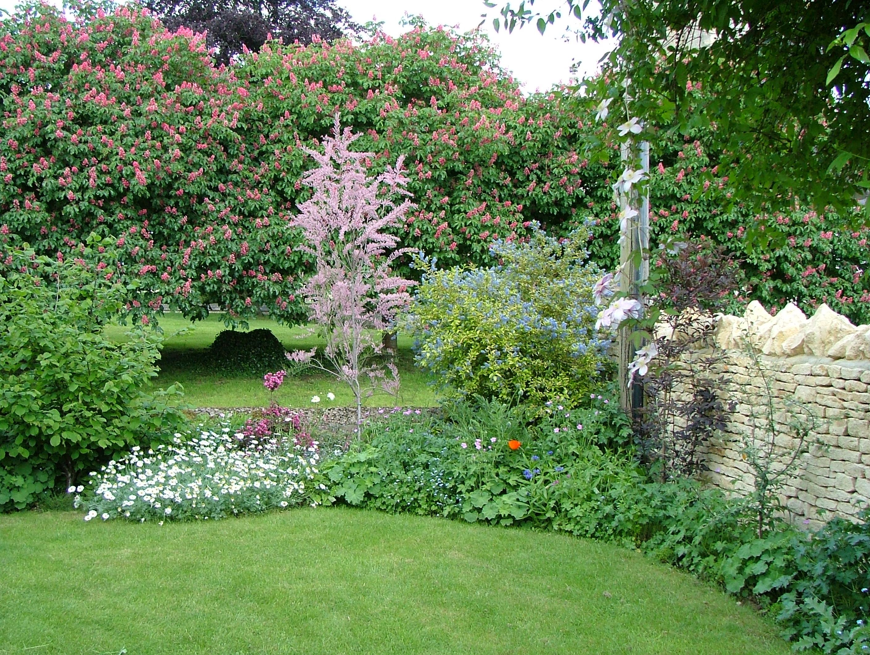 file garden 01 jpg wikimedia commons