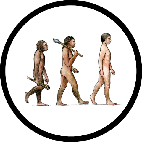 Human Evolution Icon