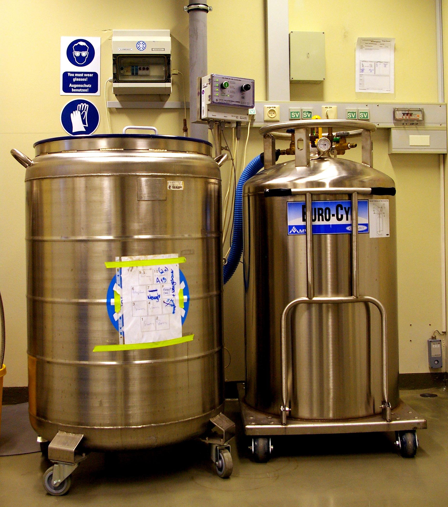 File Liquid Nitrogen Tank For Cryostorage 11 Jpg