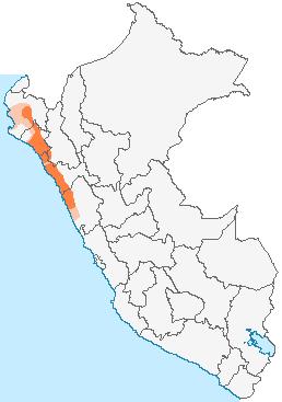 Cultura Mochica ( pre-inca)