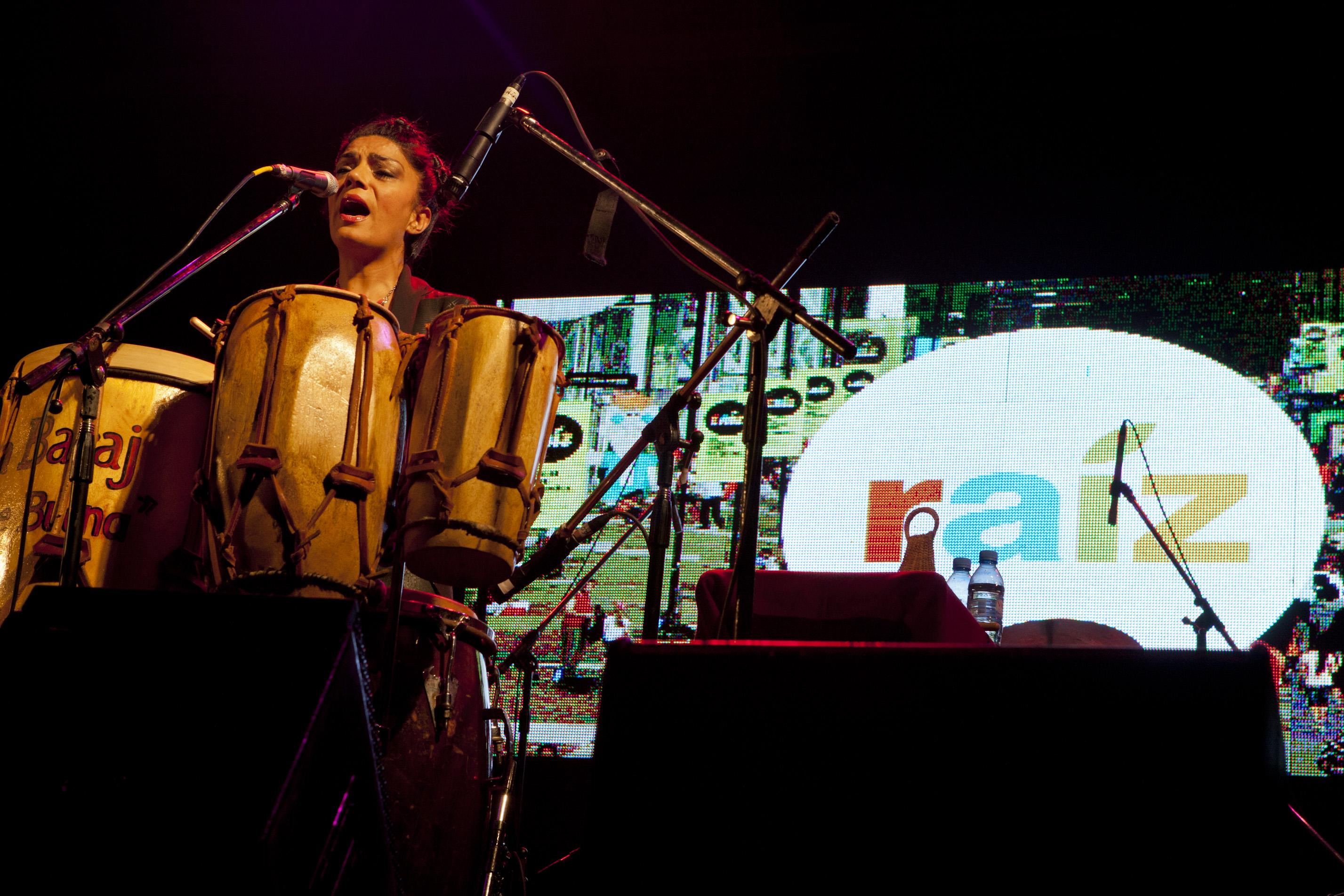 Mariana Baraj en un festival en Tecnópolis (Villa Martelli, 2 de noviembre de 2014).
