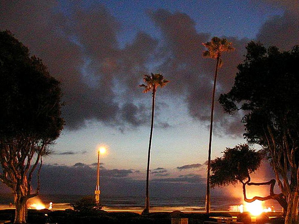 FileOcean Beach In Sunset Palm Trees