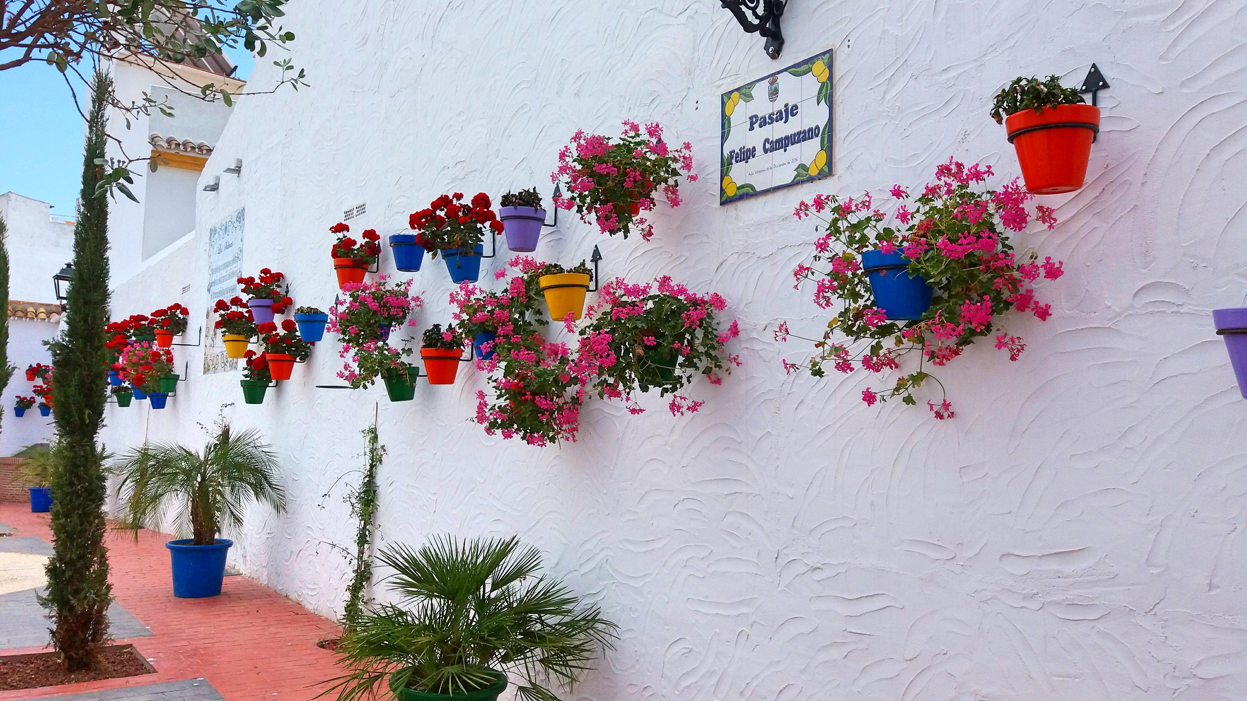 File pasaje f campuzano estepona el jardin de la costa del wikimedia commons - El jardin del sol ...