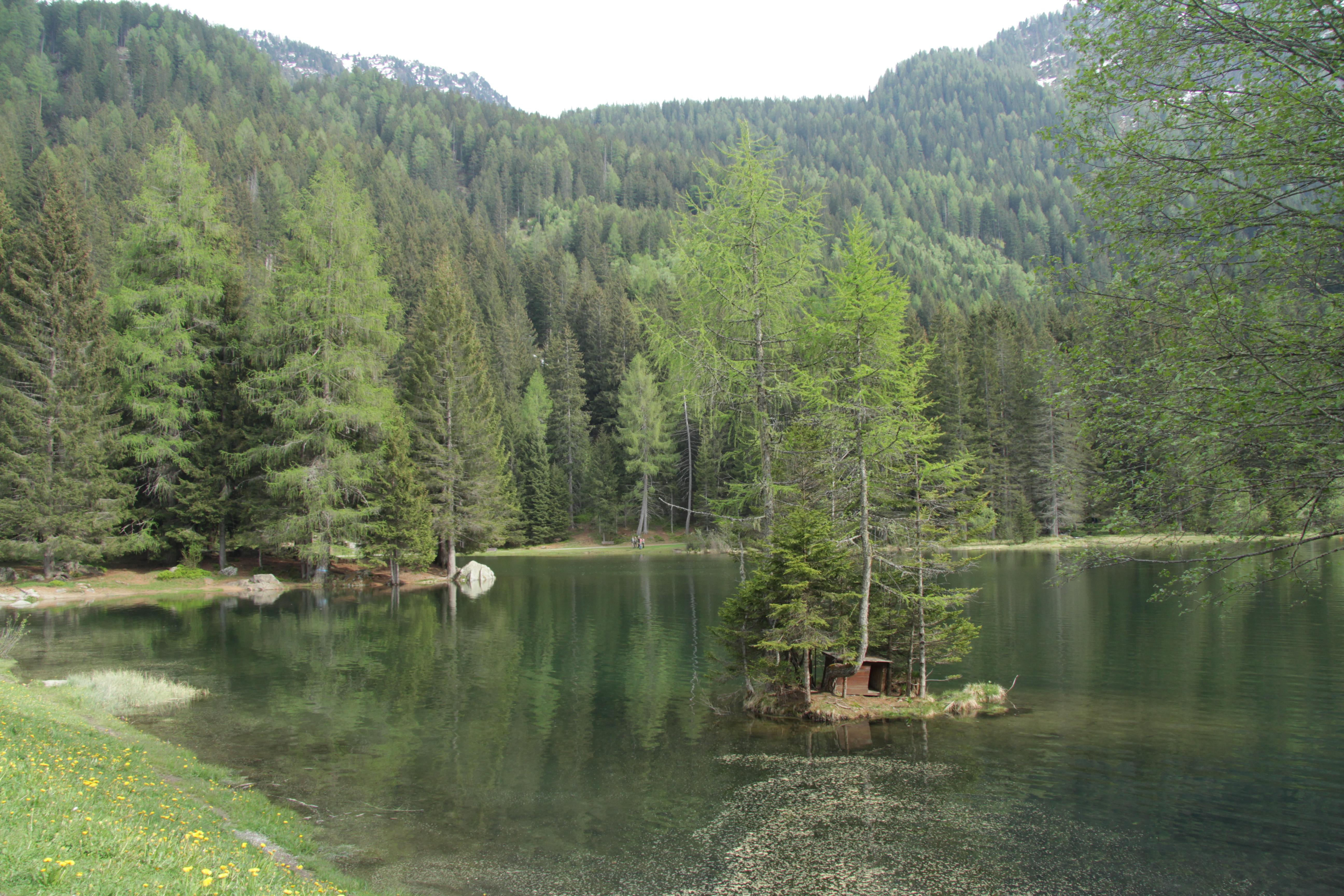 File pellizzano lago dei caprioli for Lago n