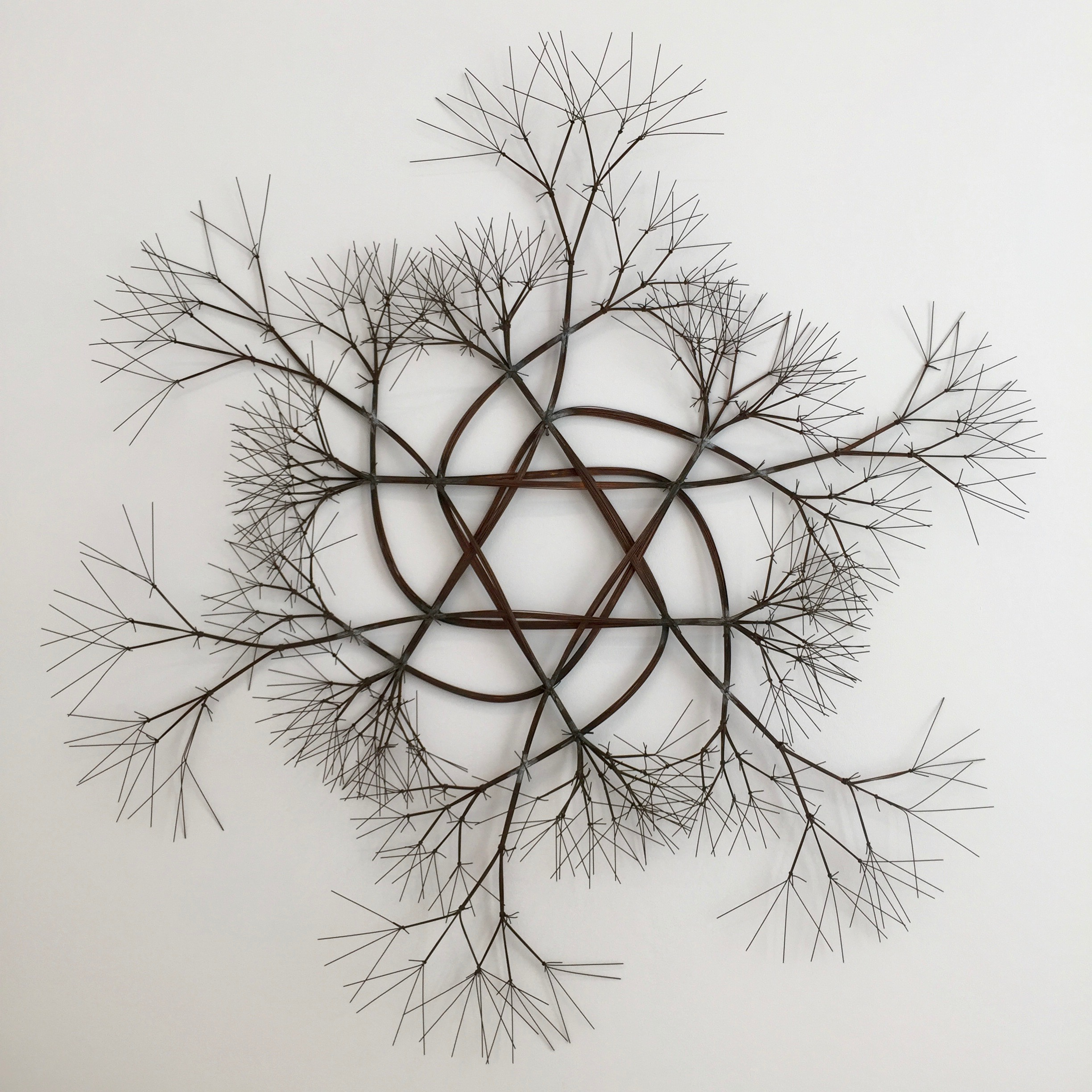 File:Ruth Asawa, Untitled (S.383, Wall-Mounted Tied Wire, Open ...