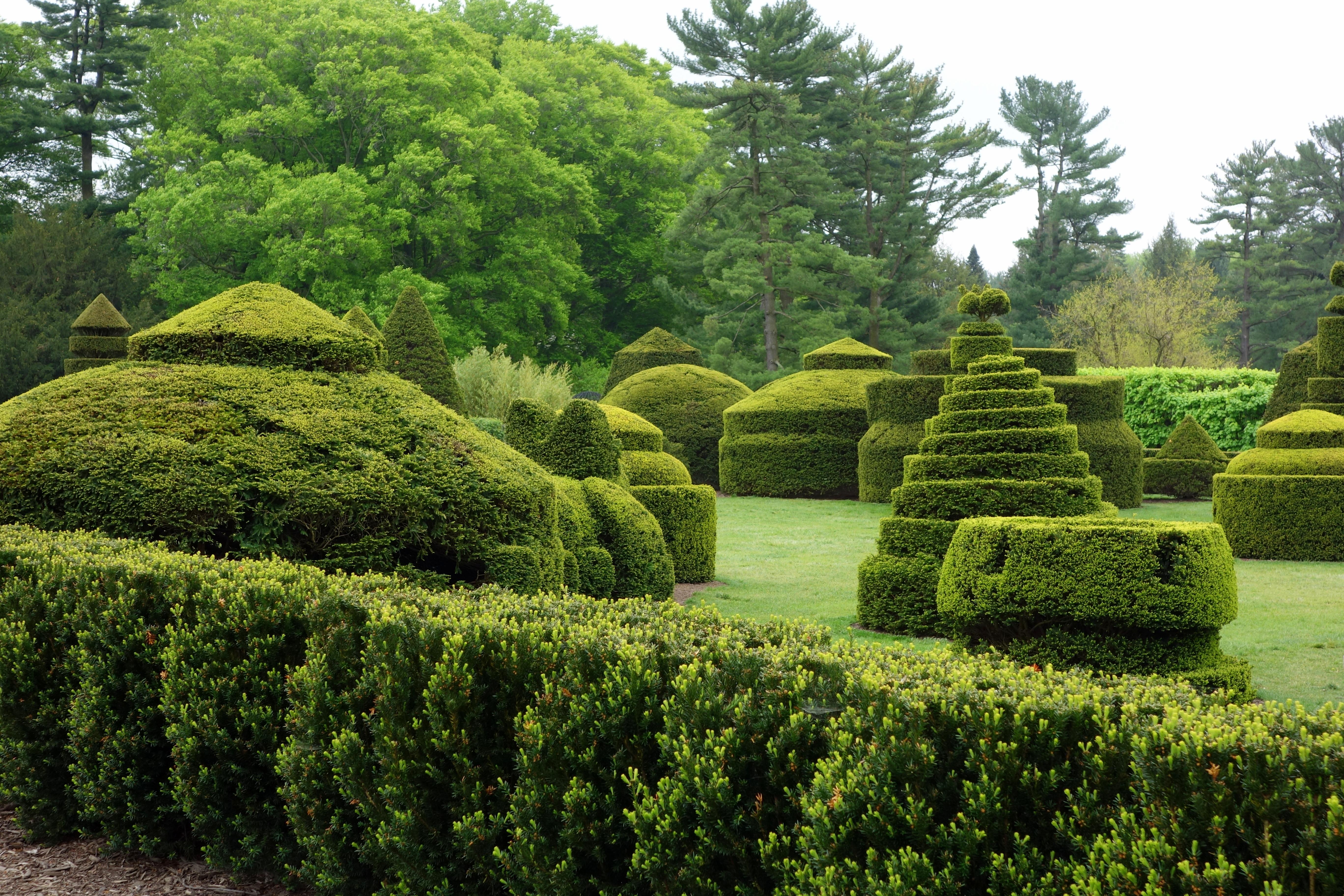 File Topiary Longwood Gardens Dsc00850 Jpg