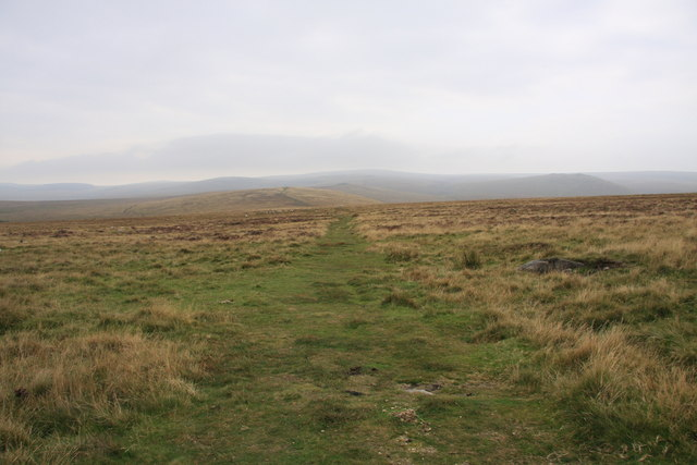 Towards Little Hound Tor - geograph.org.uk - 1499113
