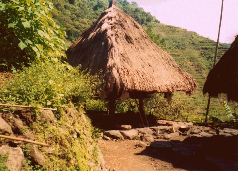 gendered experiences in ifugao an article