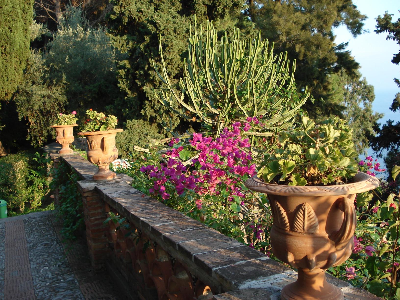 Cisa Vedere Vicino Villa San Giovanni