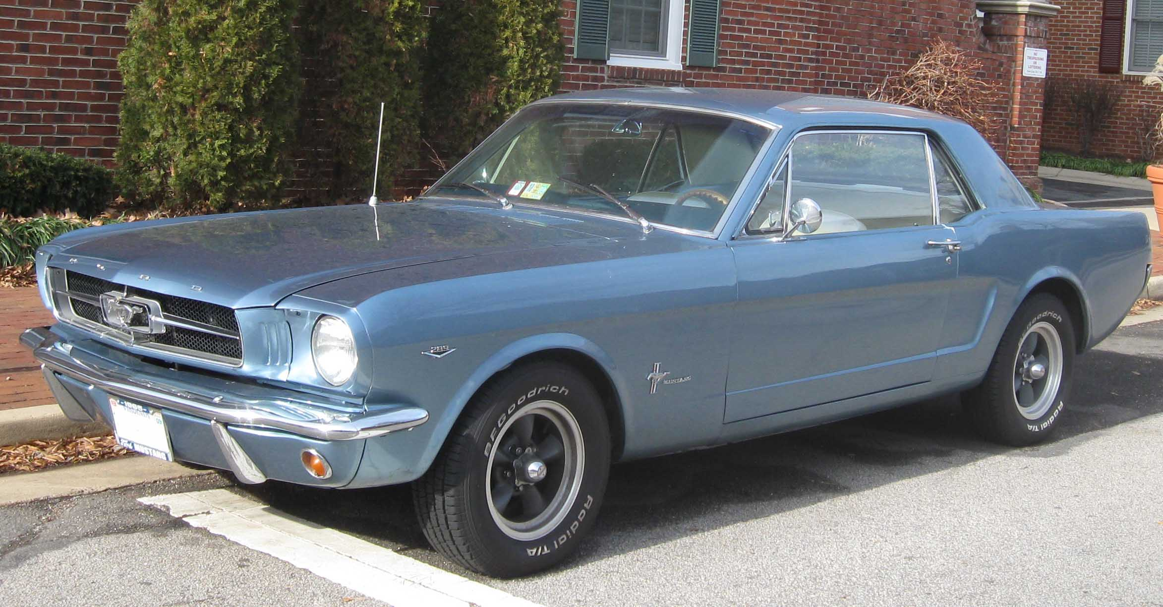 Ford Mustang Fastback 1965 Has Opened