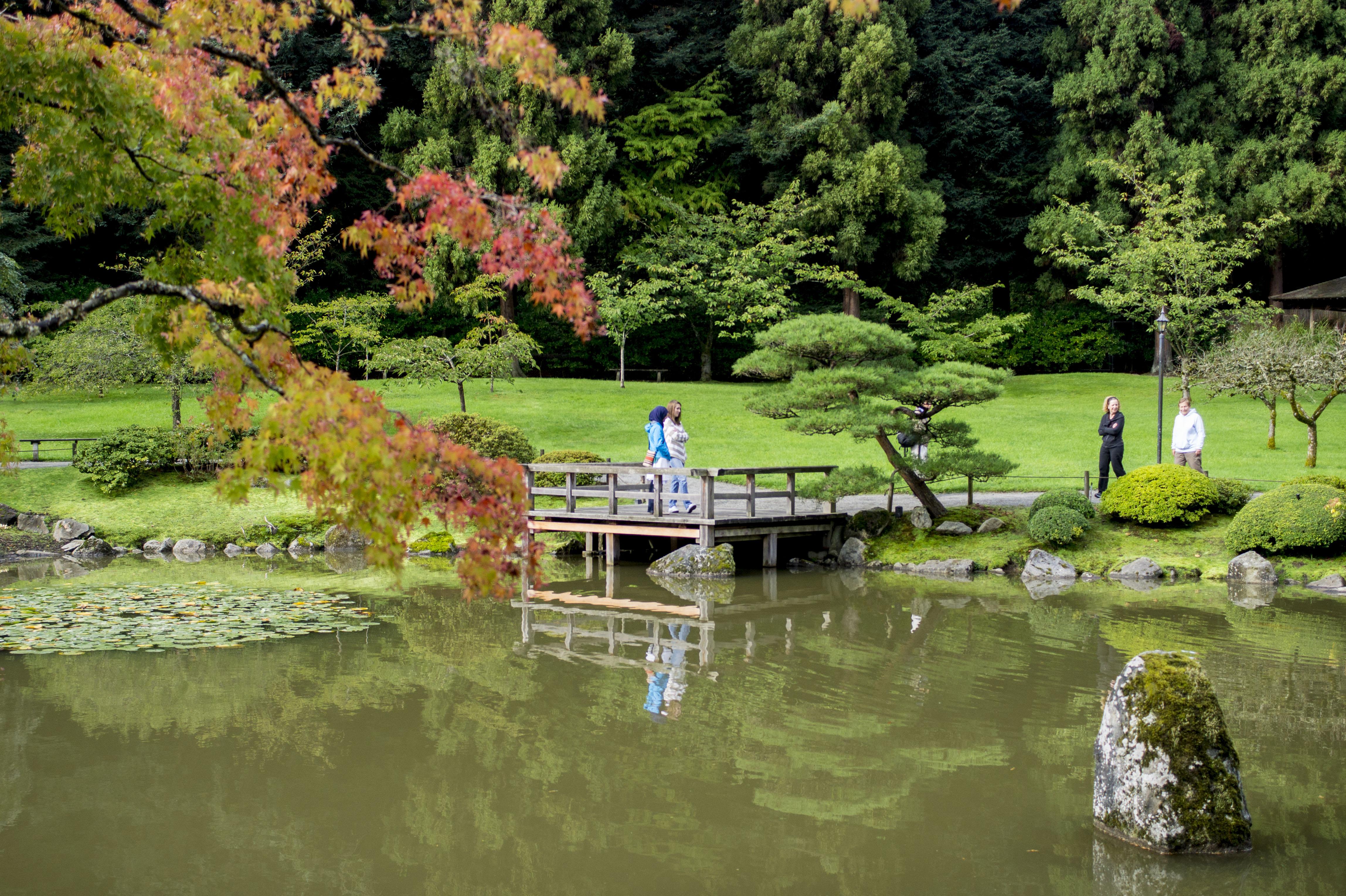 2014 Seattle Japanese Garden Maple Viewing Festival (15552021022).jpg