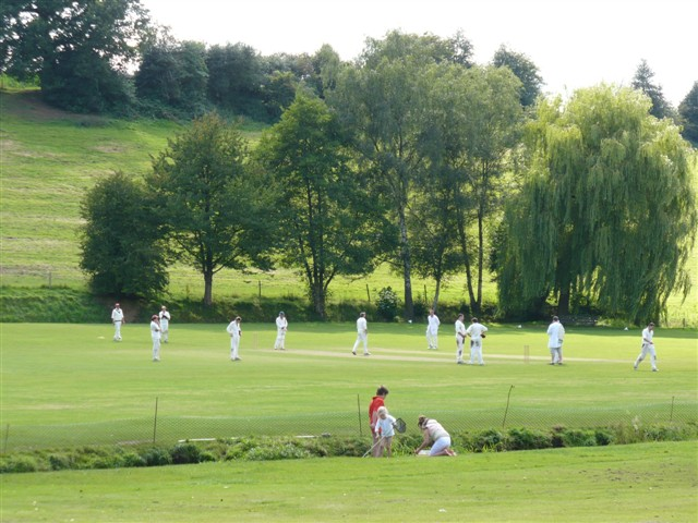 Abinger Hammer Cricket Pitch - geograph.org.uk - 523348