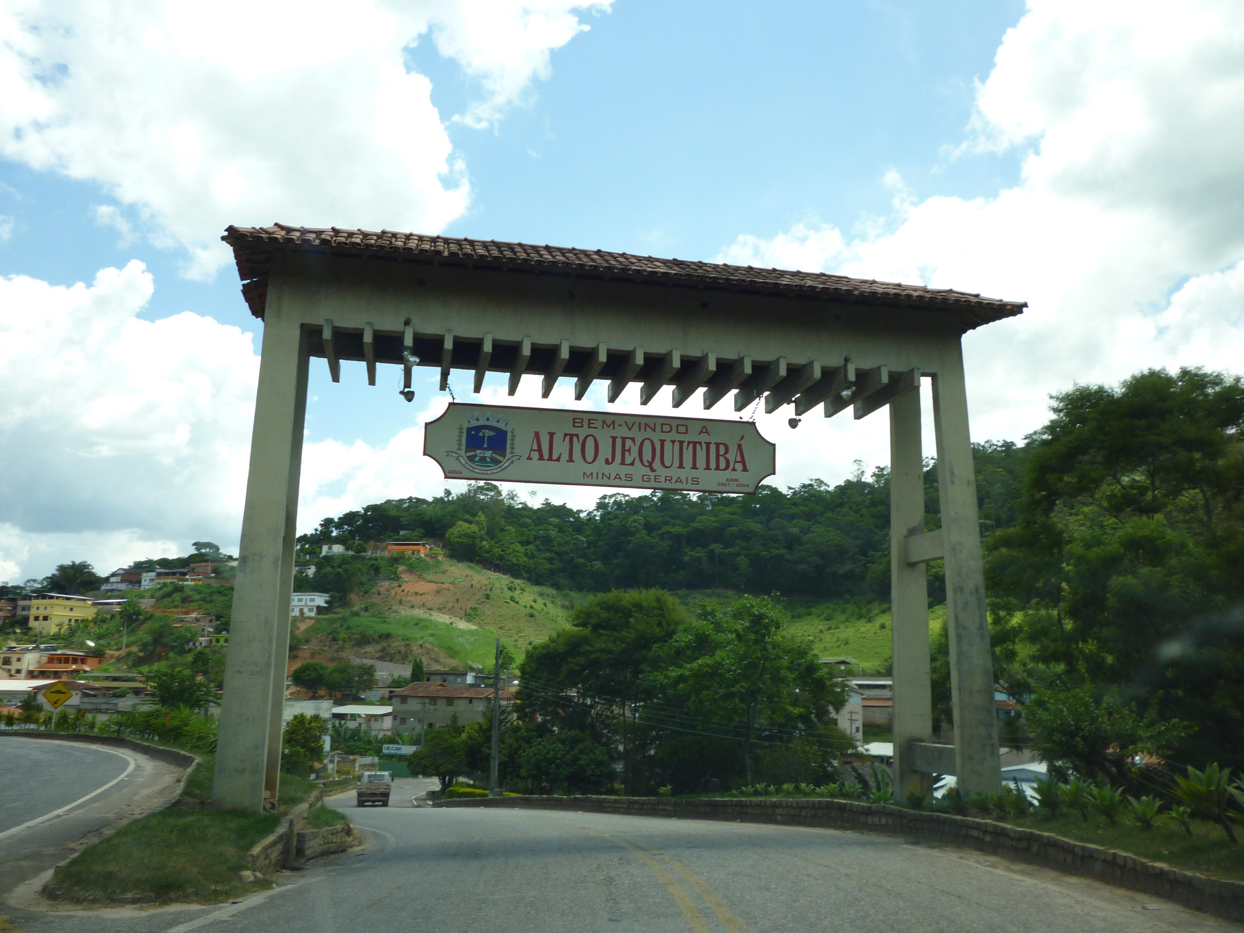Jequitibá Minas Gerais fonte: upload.wikimedia.org