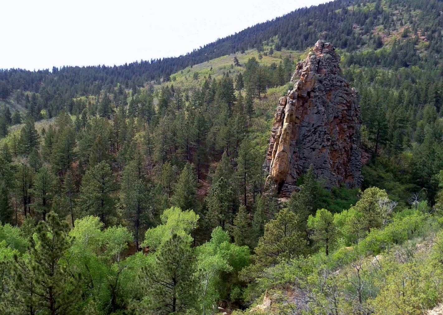 Bear Creek Nature Center In Colorado Springs