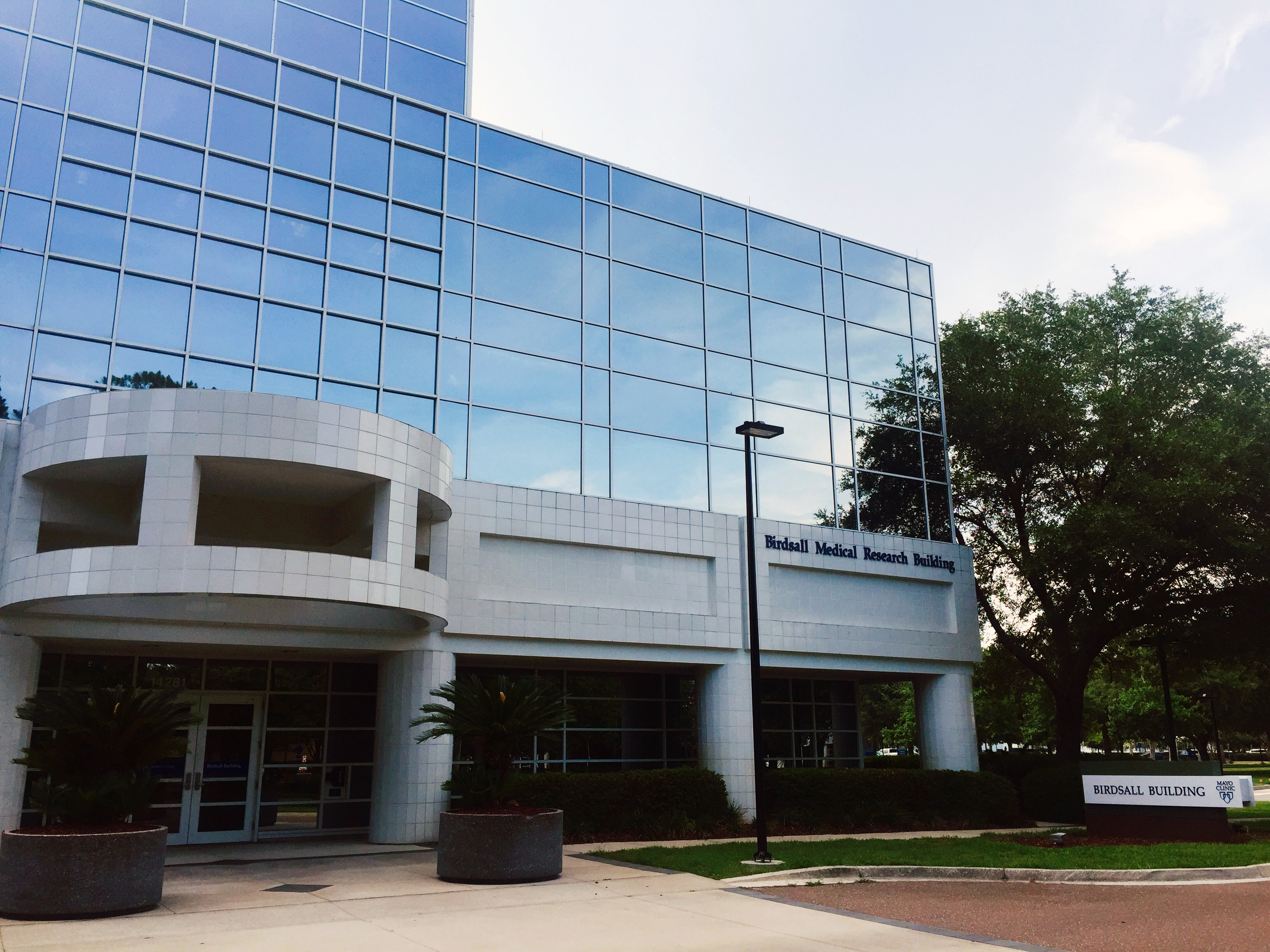Mayo Clinic Florida - Wikipedia