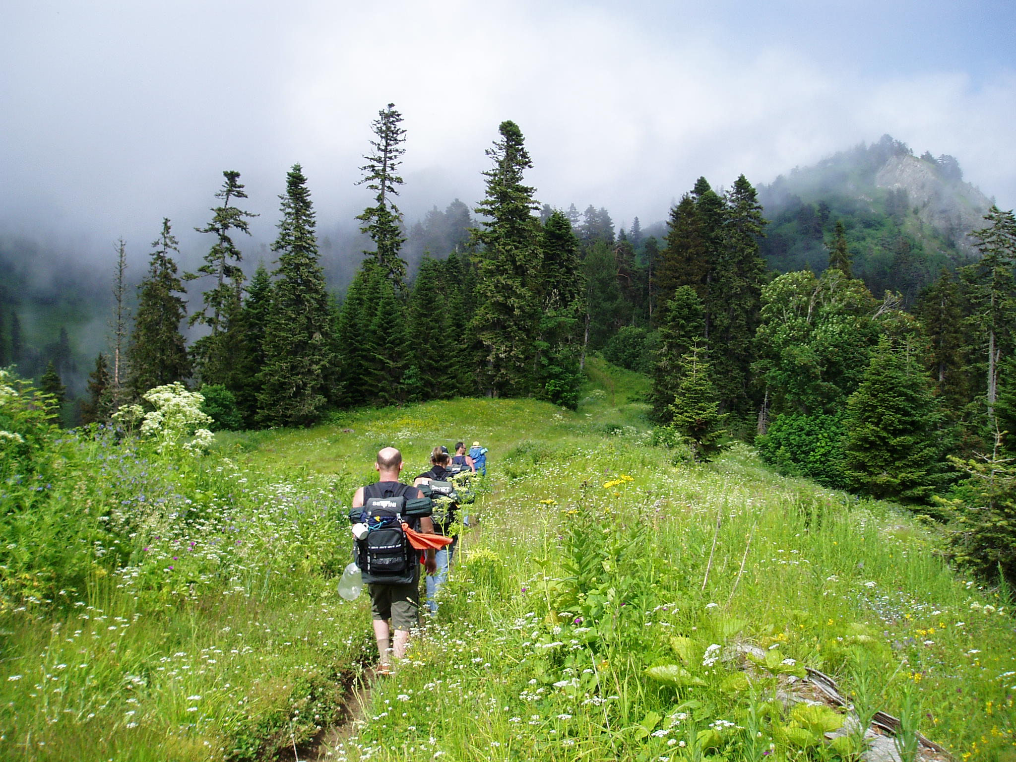 Trail of St. Andrew's at Borjomi-Kharagauli