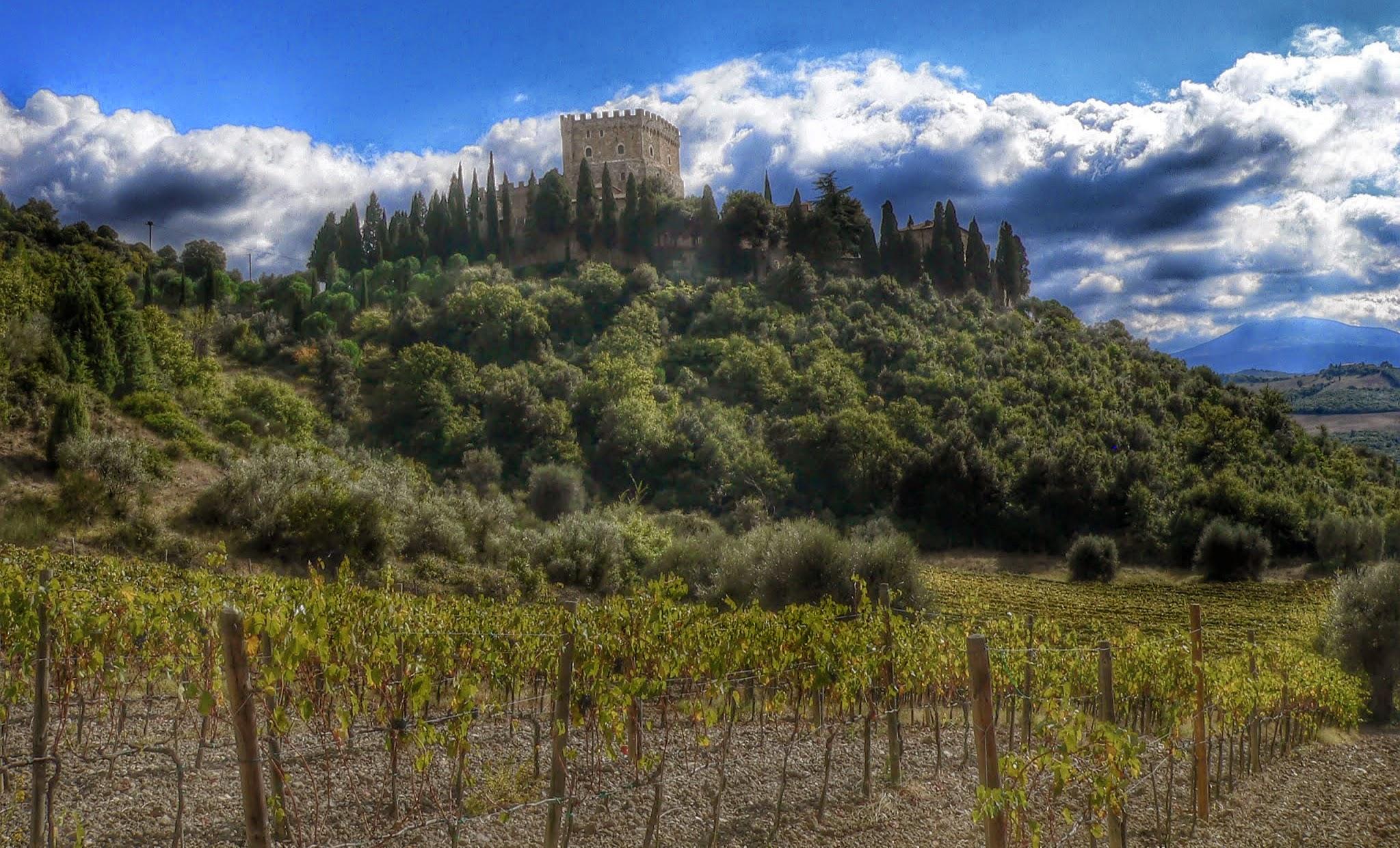 Castello di Ripa D'Orcia - panoramio.jpg