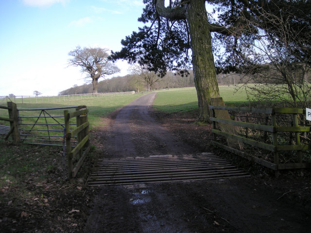 File:Cattle Grid and Private Road - geograph.org.uk - 723352.jpg