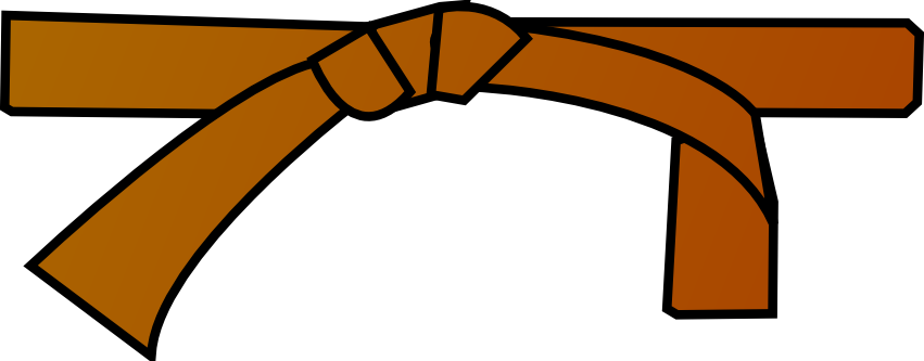 https://upload.wikimedia.org/wikipedia/commons/1/14/Ceinture_marron.png