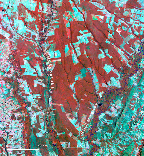 File:Deforestation Carceres Braasil 1996.jpg