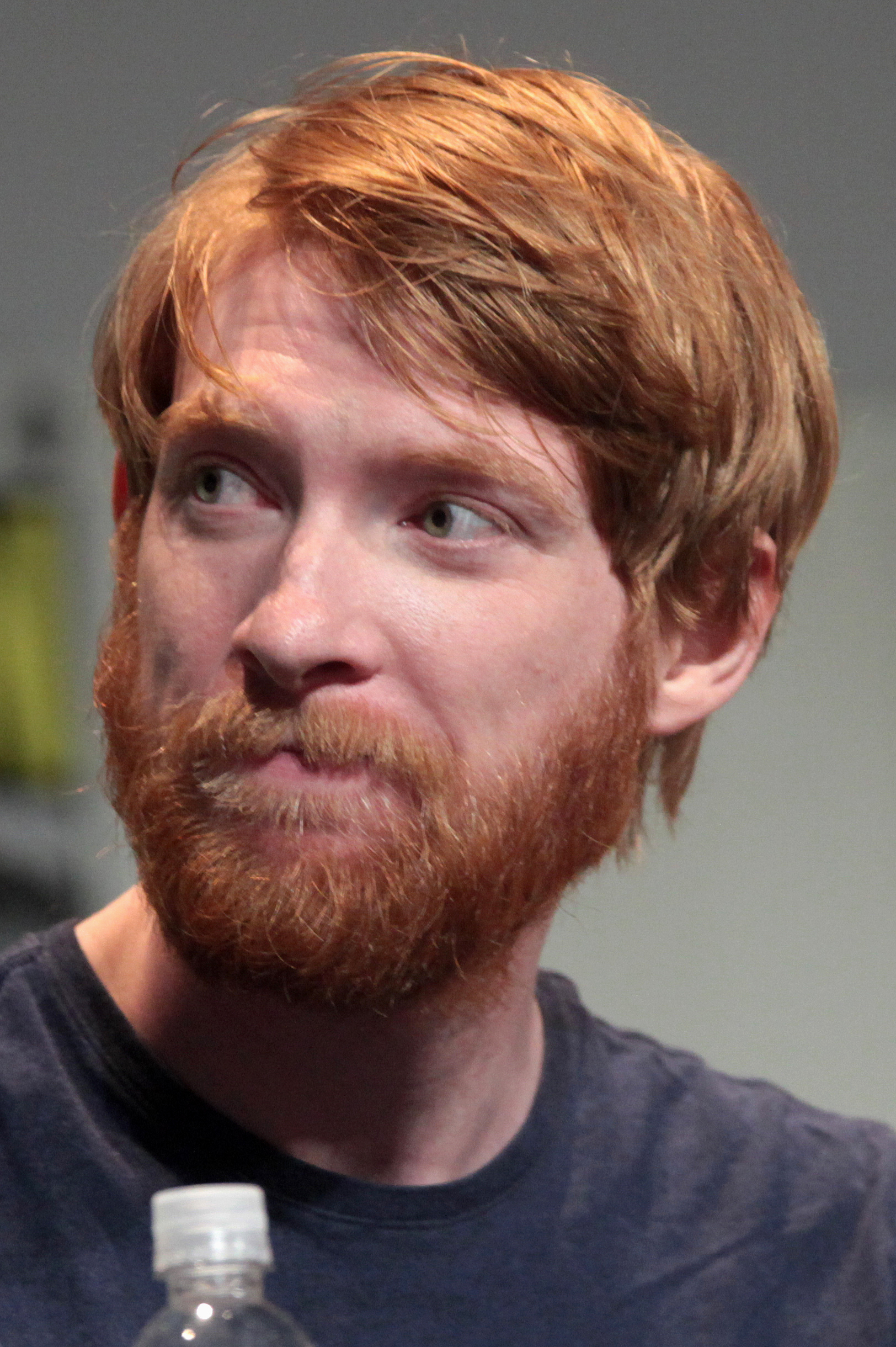 Gleeson at the 2015 [[San Diego Comic-Con]]