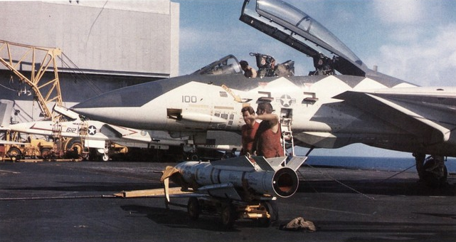 Grumman F-14 Tomcat in Action Squadron Signal Book # 1032 Good Condition