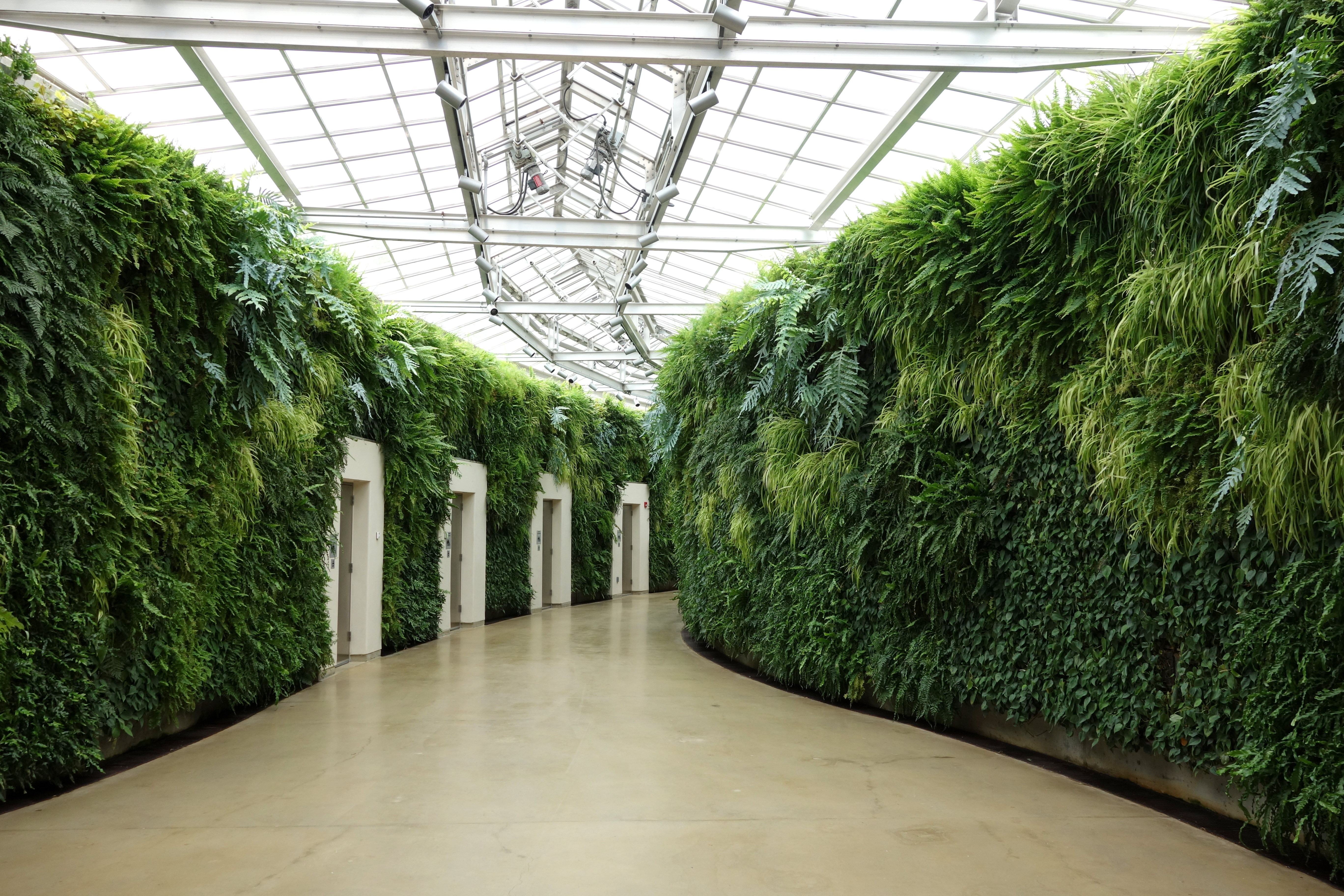1000 Images About Landscape Green Wall On Pinterest