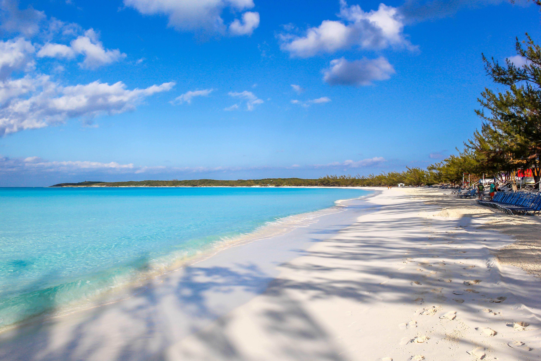 Half Moon Cay Self Tour Spot Wildlife