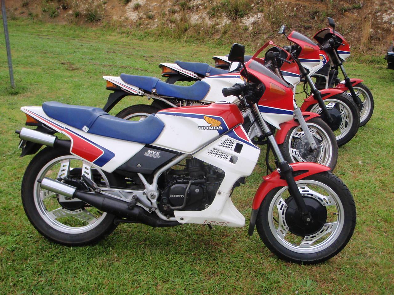 File Honda Motorcycles Mvx250 Jpg Wikipedia