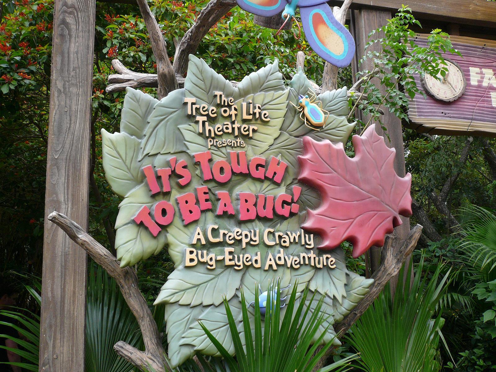 Dicas do Parque Animal Kingdom