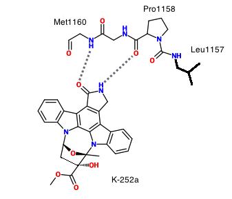 how to develop kinase inhibitors
