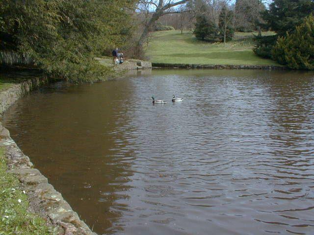 Lyme Park - geograph.org.uk - 997386