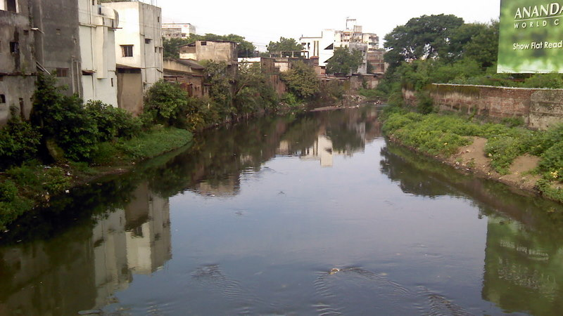 Pollution of the Pasig River