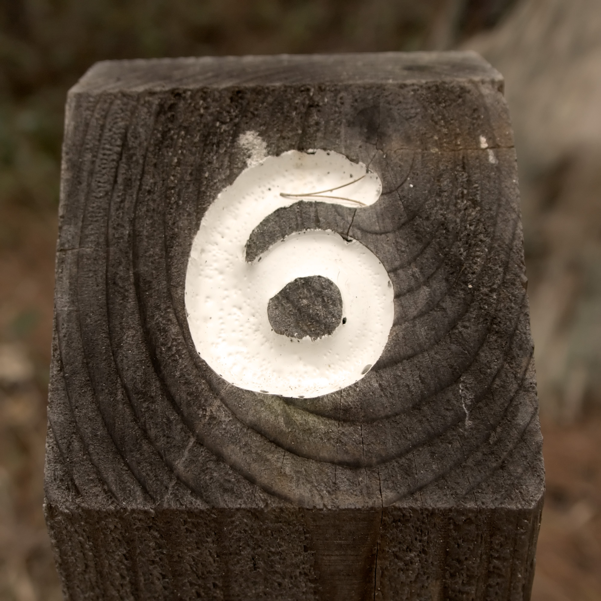 Nature's_Number_6.jpg