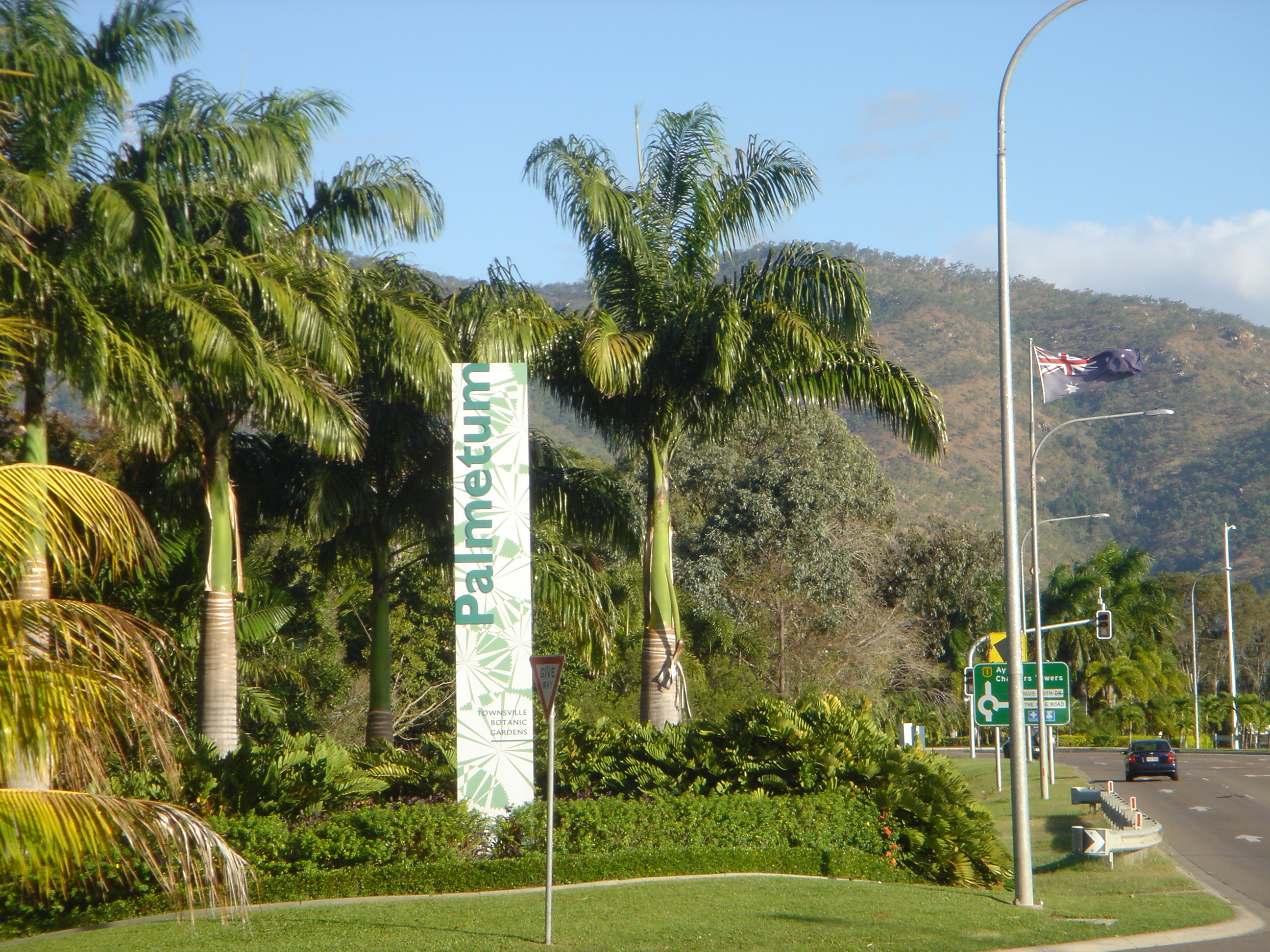 Is The Palmetum Tea Rooms Townsville Closing Down