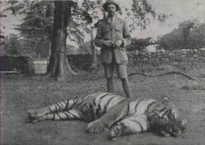 Jim Corbett, le chasseur de mangeurs d'hommes, avec un tigre qu'il a tué