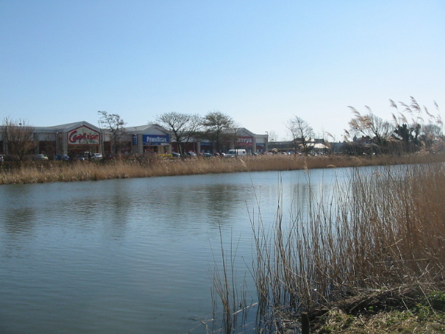 Radipole Lake Nature Reserve and superstores - geograph.org.uk - 147844