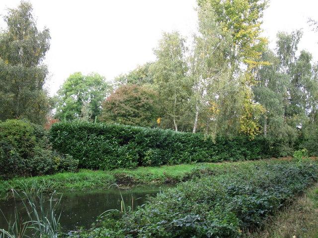 River Blackwater - geograph.org.uk - 1528138