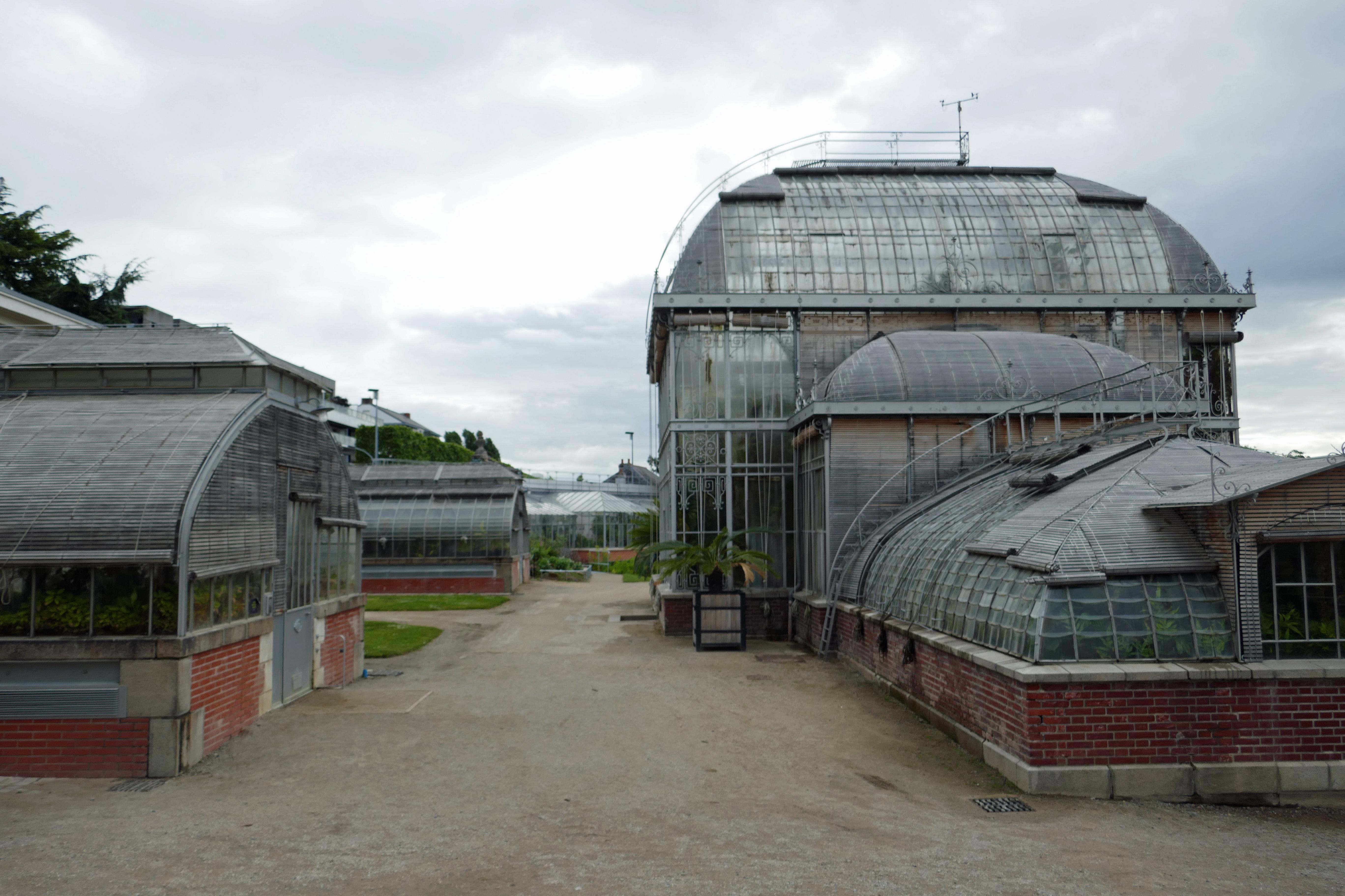 File:Serres tropicales-Jardin des plantes de Nantes (1).jpg ...