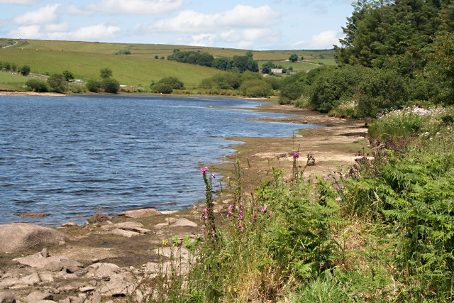 The Northern End of Siblyback Lake - geograph.org.uk - 1393248