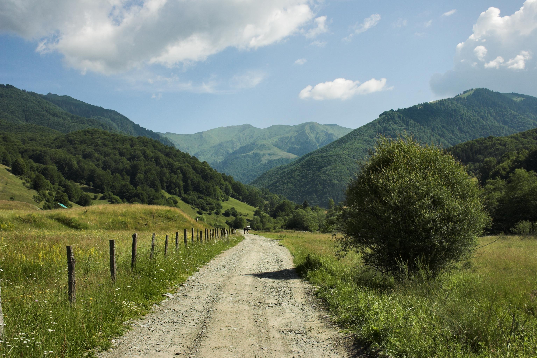Romania-Forest-Landscape-Mountains