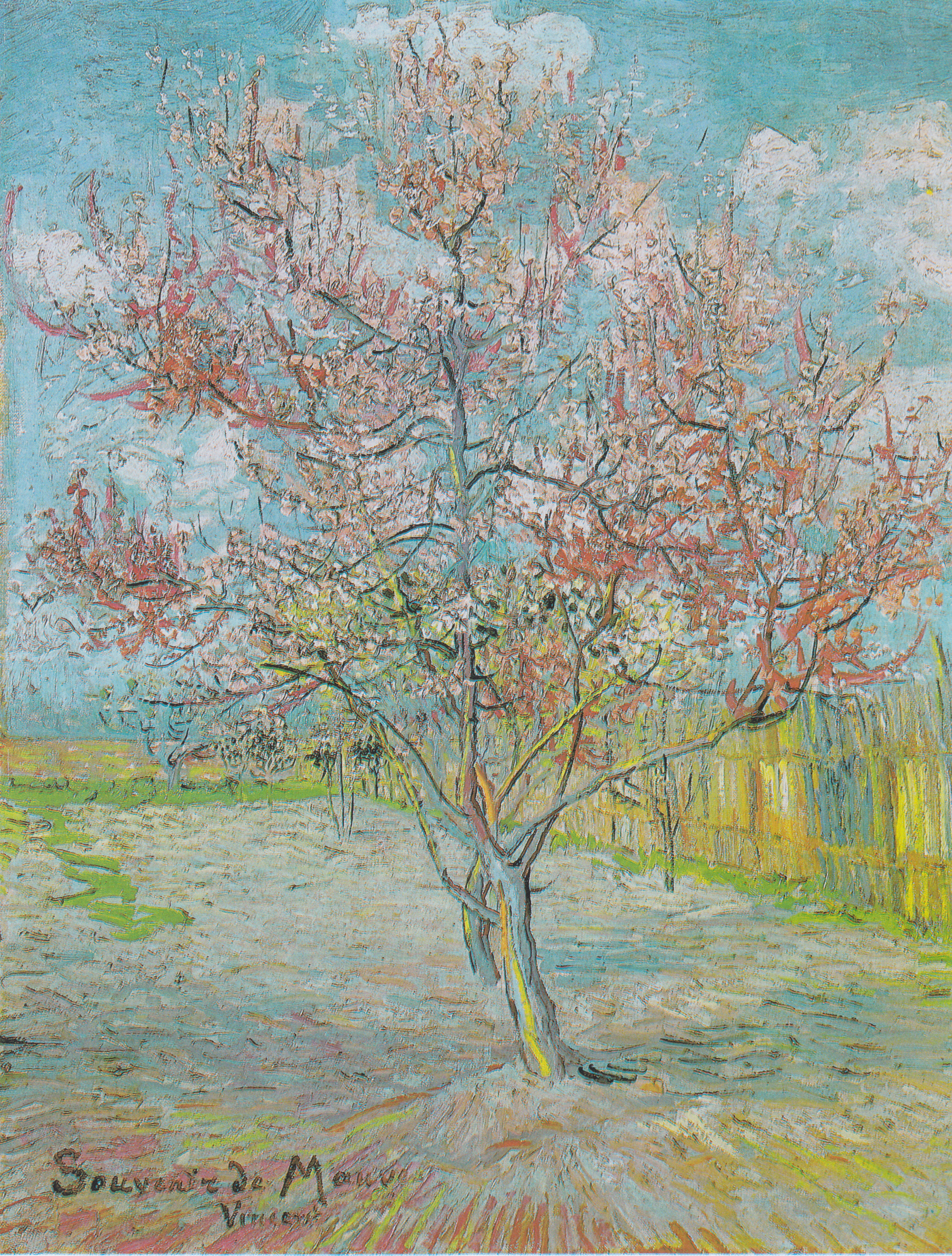 Flowering Orchards Wikipedia