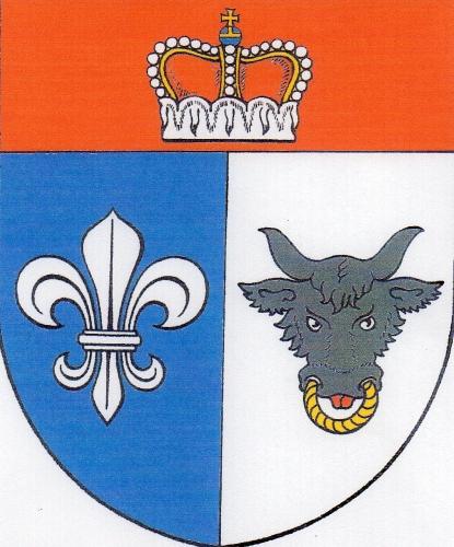Velké Janovice
