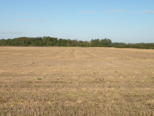 File:A stubbly field - geograph.org.uk - 1016993.jpg