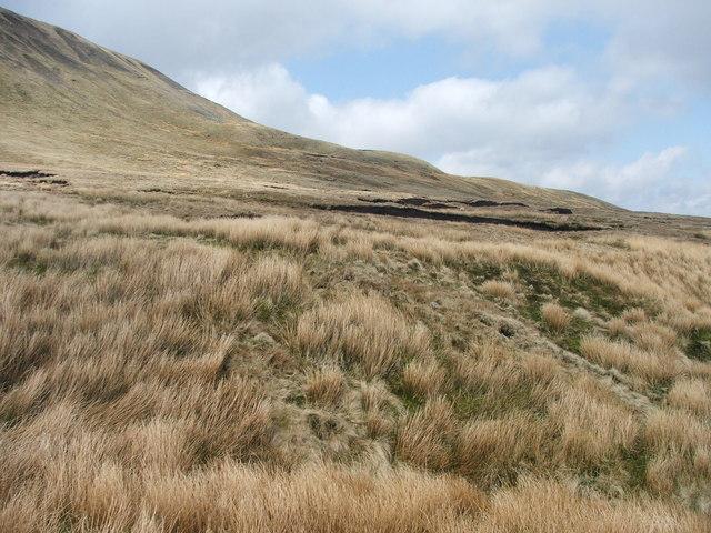 Beneath the Whernside ridge. - geograph.org.uk - 156264