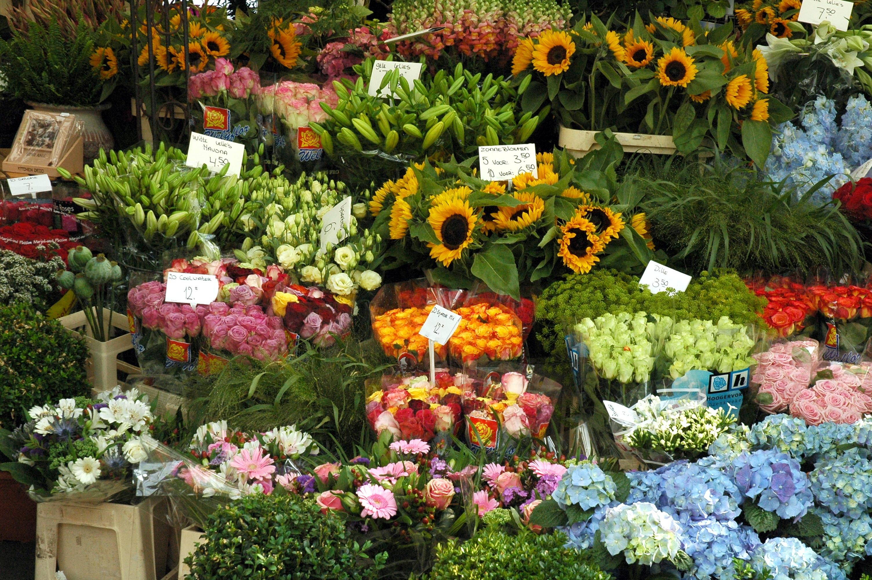 Название цветов на рынке фото