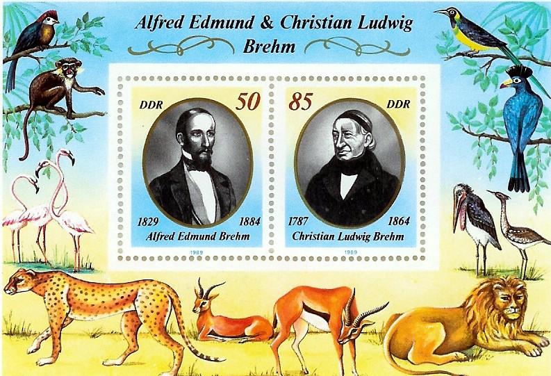 Brehm-BriefmarkenblockDDR.jpg