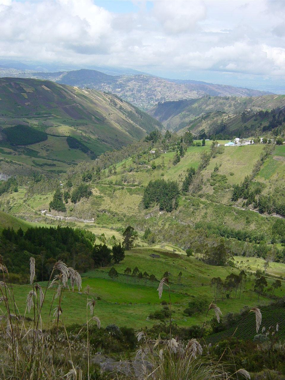 Ambato ecuador alchetron the free social encyclopedia for Nearby landscapers