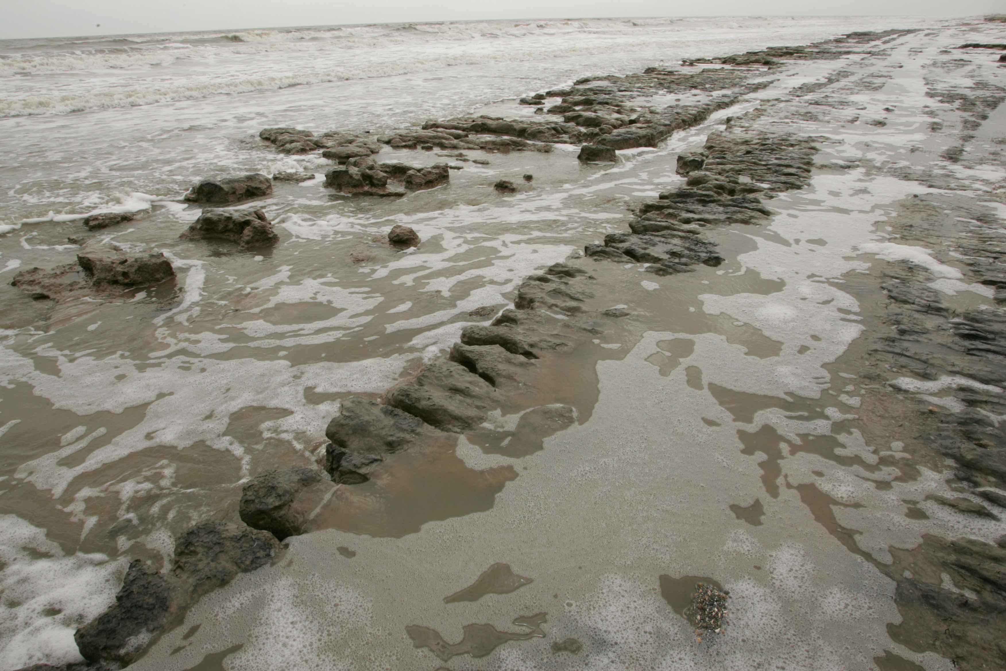 File example of beach errosion beach mud jpg wikimedia commons